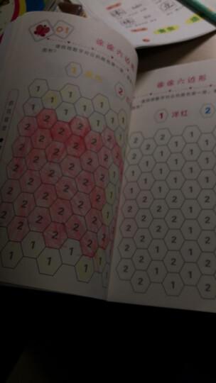 学前 幼小衔接 专注力训练+记忆力训练+观察力训练(套装全6册)真果果出品 晒单图