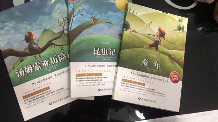 影响孩子一生的世界名著 全套8册 儿童文学小说小王子 中小学生读课外读物昆虫记 适合6-15岁阅读书 晒单图
