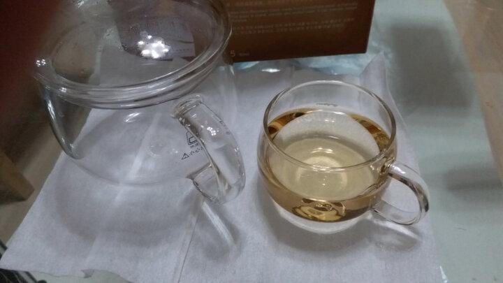 金灶(KAMJOVE)耐热玻璃杯 品茗杯 家居用办公品茗茶具杯套装 小茶杯泡茶杯 K-105/四个装80毫升 晒单图