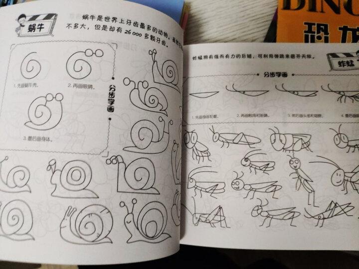 简笔画5000例一本就够了 幼儿童简笔画大全 宝宝学画画绘画册美术书简笔画入门教程 晒单图