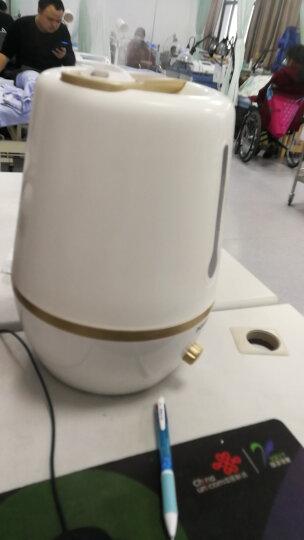 奔腾(POVOS)加湿器 5L大容量 双出雾口 静音迷你办公室卧室客厅家用带香薰盒加湿 PW137 梦幻紫色 晒单图
