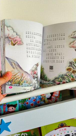 杨红樱童话美绘注音本:舒展童心童趣,帮助孩子找到成长的力量(套装10册) 晒单图