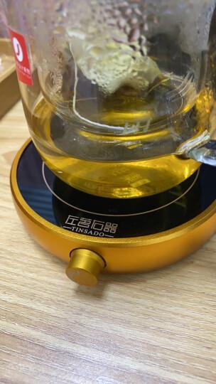 左茗右器 保温底座 加热杯垫 电热恒温茶器 暖杯器 玻璃茶壶茶杯子办公室茶座 功夫茶具配件 恒温55℃圆形白 晒单图