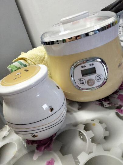 小熊(Bear)米酒酸奶机 家用全自动蜜罐陶瓷内胆 微电脑定时 SNJ-530 浅黄色 晒单图