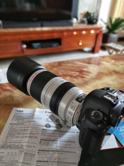 佳能(Canon)远摄长焦变焦 EF卡口单反相机镜头 28-300mm F3.5-5.6L IS USM 晒单图
