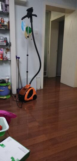贝尔莱德(SALAV)家用挂烫机 蒸汽熨烫机 手持熨斗 经典烫衣机GS29-BJ 晒单图