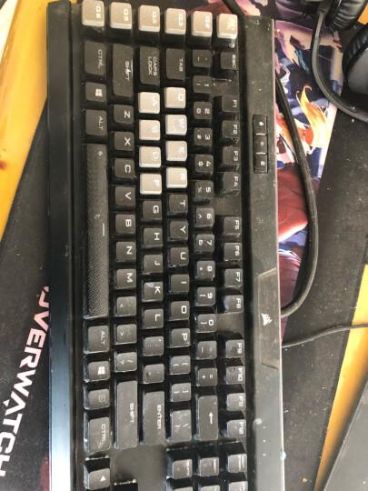 德甲士(WATASHI) 笔记本机械键盘清洁泥清理清洗电脑的工具除尘胶软胶套装 清洁胶泥 晒单图