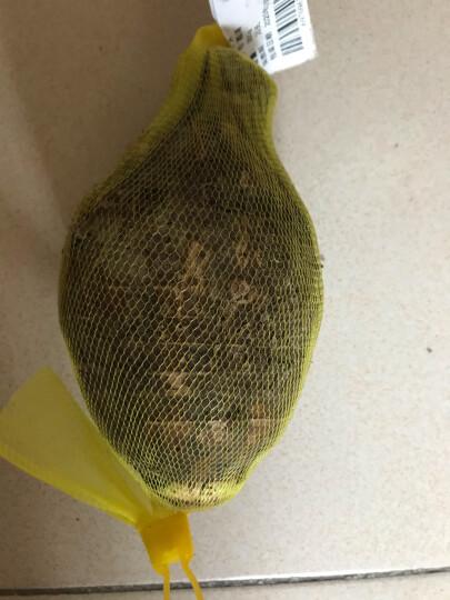 品贯 荔浦芋头 500g 广西荔浦新鲜大香芋 2020新挖特产 生鲜蔬菜大槟榔 宝宝辅食 生鲜蔬菜 农产品 芋头 1个 晒单图