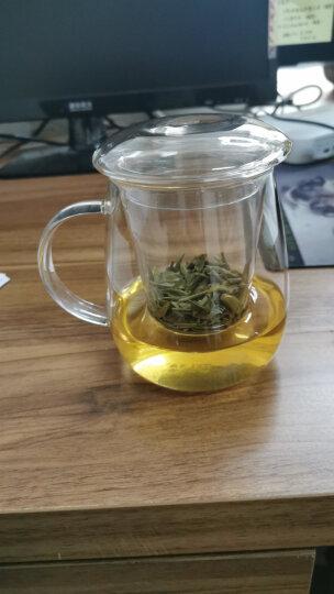 物生物/RELEA 玻璃杯 茶水分离杯 耐热泡茶杯子 带过滤茶水分离玻璃水杯花茶杯 蘑菇杯500ML 晒单图