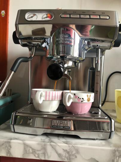 惠家(WELHOME) kd-270s意式半自动咖啡机 专业泵压式咖啡机 家用商用单头 双水泵双锅炉 晒单图