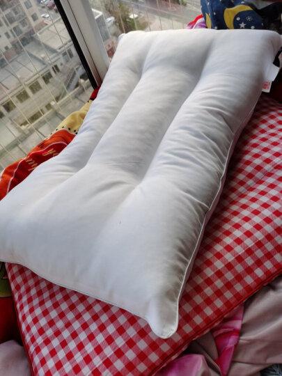 南极人NanJiren 枕头枕芯 荞麦枕 荞麦壳荞麦皮颈椎枕头芯 安睡枕 约5斤 晒单图