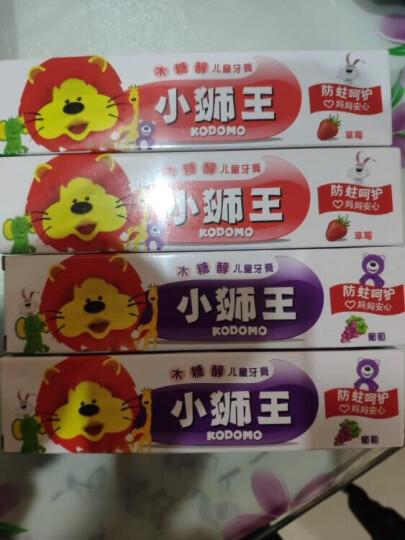 狮王(Lion)小狮王木糖醇儿童牙膏40g(葡萄) 晒单图