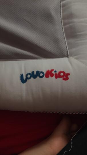 LOVO罗莱生活出品 儿童全棉枕决明子荞麦壳枕头枕芯 40*65cm 晒单图
