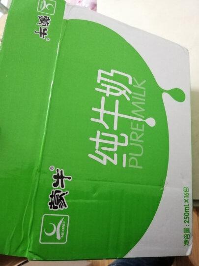 蒙牛 纯牛奶 PURE MILK 250ml*16  礼盒 航天定制装 晒单图