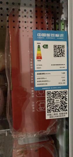 星星(XINGX) 236升 立式玻璃门冷柜 饮料陈列柜 商用冷藏冰箱(银灰色) LSC-236C 晒单图