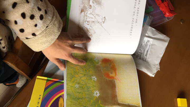 国际绘本大师约翰·伯宁罕:爱德华·世界上最恐怖的男孩(启发童书馆出品) 晒单图