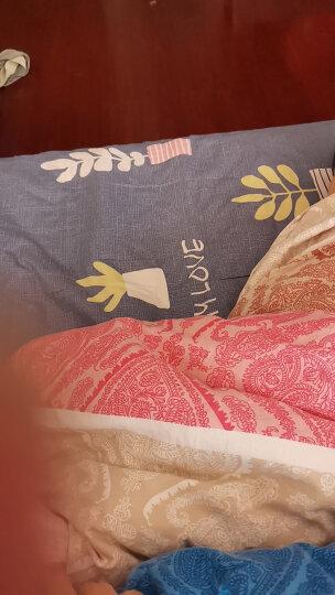 艾薇 床笠 全棉床笠 席梦思保护套 床罩床套床垫罩 单件 迷离夜色 150*200cm 晒单图
