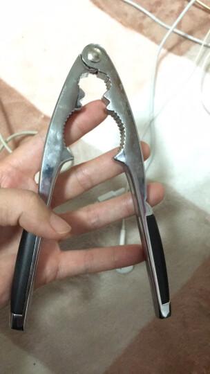 欧橡 OAK 核桃夹 多功能坚果钳 剥核开核夹山核桃剥壳器 OX-C115 晒单图