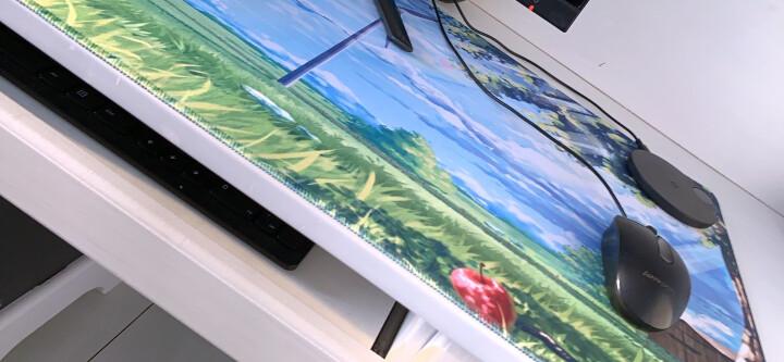 超大号办公电脑桌面鼠标垫加厚可爱女生快捷键键盘excelcad笔记本桌垫office电竞游戏写字ps 个性图-减肥 晒单图