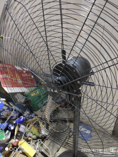 长城(CHANGCHENG)FL-75 电风扇 工业扇工厂车间厂房落地扇 晒单图