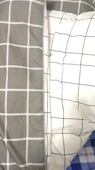 百富帝(byford)被子冬天棉被冬被冬季法兰绒单人床加厚学生宿舍保暖春季被芯1.5米 152*218cm 灰色 晒单图