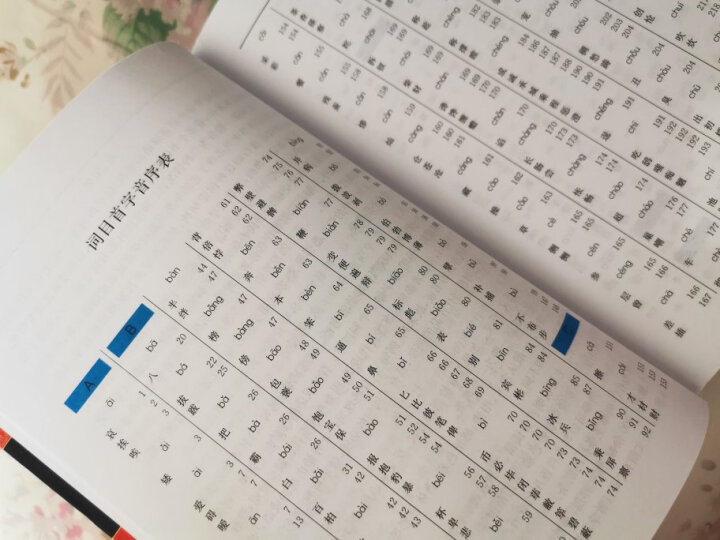成语大词典 彩色最新修订版 小学生多功能成语词典 2020年新版中小学生专用辞书工具书字典词典 晒单图