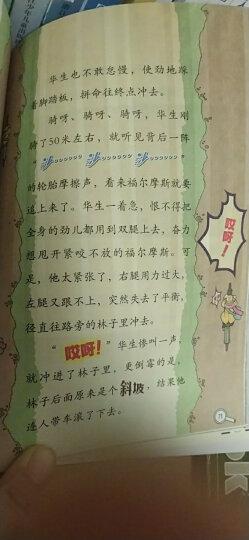 大侦探福尔摩斯小学生版(第六辑)(套装全4册) 晒单图