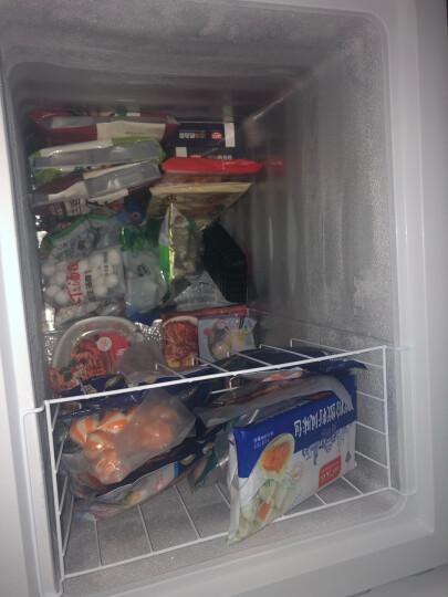 海信(Hisense)143升 冷藏冷冻转换冰柜 云鸿减霜小型家用冷柜 节能省电卧式小冰箱BD/BC-143NA/B 晒单图