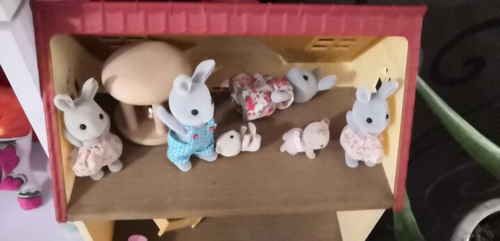 森贝儿家族儿童玩具女孩礼物过家家公主娃娃玩具公仔玩偶兔子家族5124 晒单图