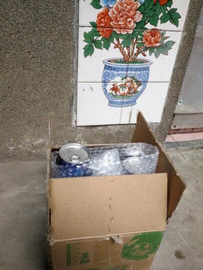 一枝笔 【莱阳馆】莱阳梨汁饮料 梨汁润喉果汁果味饮品245ml*6罐装组合包邮 晒单图