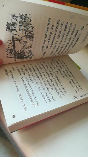 罗尔德·达尔作品典藏·女巫 三年级推荐课外阅读书 晒单图
