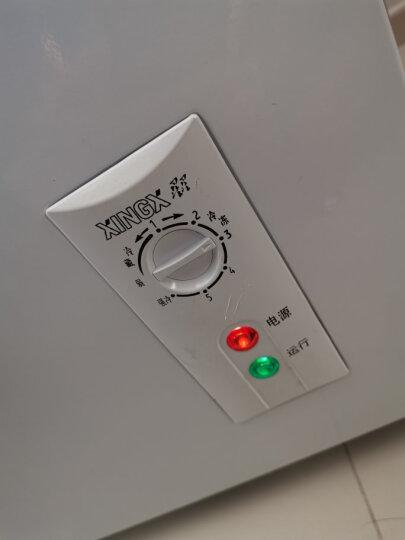 星星(XINGX) 107升 家用冷柜 微霜系统 欧式直角 冷藏冷冻转换冷柜 单温单箱母婴母乳冰箱 BD/BC-107JE 晒单图