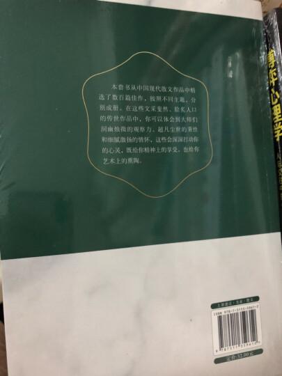 传世散文经典 : 乡关何处 晒单图