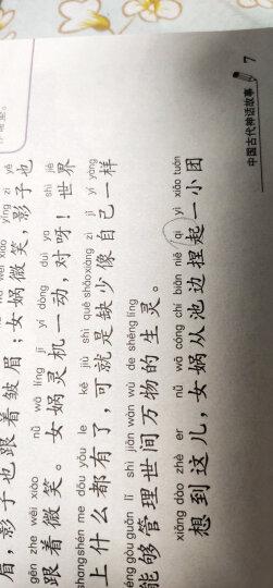 希腊神话故事(梅子涵等15位名师名家推荐经典名著彩绘注音版,小学生课外阅读) 晒单图