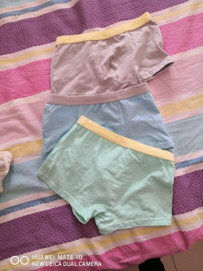 俞兆林 YUZHAOLIN 儿童内裤 A类标准女童四条盒装三角平角内裤YL17T003DZ小鹿和小兔平角130码 晒单图