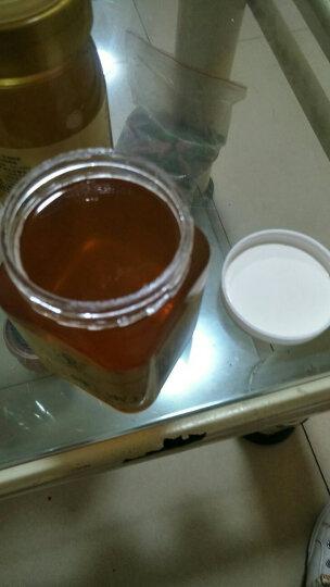 汉农 秦岭土蜂蜜 深山野蜂蜜500g  新玻璃瓶液体蜜 晒单图