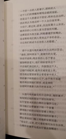 名著名译精装:荷马史诗·伊利亚特 晒单图