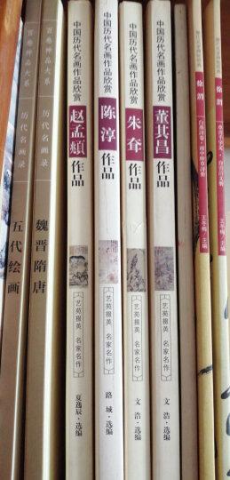 中国历代名画作品欣赏:赵孟頫作品 晒单图