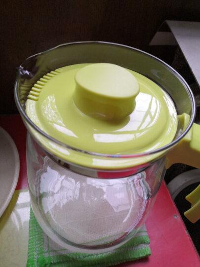 紫丁香 冷水壶 大容量耐热玻璃杯 花茶果汁杯热饮家用玻璃凉水壶 2000ml鲜爽橙 晒单图