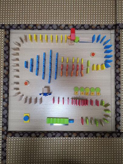 特宝儿(topbright)大象多米诺骨牌 150片 积木木制儿童玩具男孩女孩3-6岁益智玩具生日礼物 晒单图