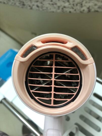 飞利浦(PHILIPS)电吹风机家用大功率SPA柔护宽广气流发廊理发店护发冷热吹风筒HP8220/05 晒单图
