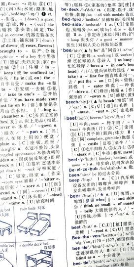 学生实用英汉大词典(第6版) 晒单图