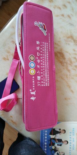 奇美QIMEI 37键口风琴小才女(粉色) 晒单图