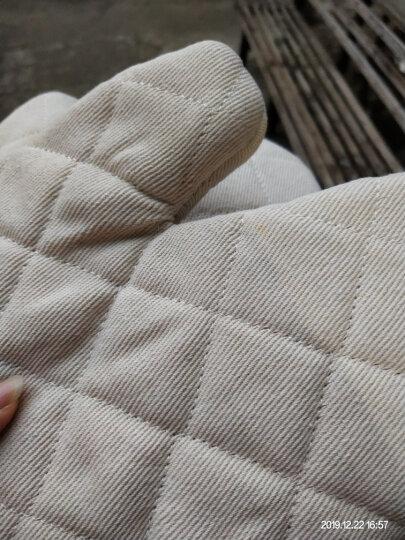 千团精工 烘培工具 厨房加厚隔热手套(两只装)烤箱微波炉耐高温防烫手套 晒单图