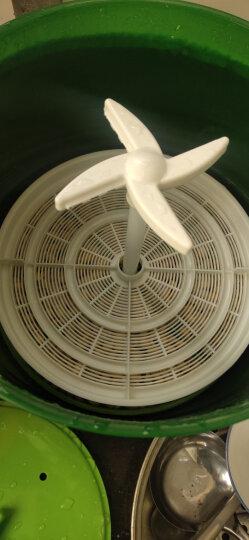 容威 豆芽机全自动家用智能发豆芽生豆芽双层三层大容量自动泡豆 DYJ-A01 青绿色 双层+2蓄水压盘 晒单图