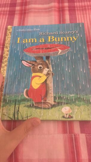 I Am A Bunny我是小兔子 英文原版 晒单图