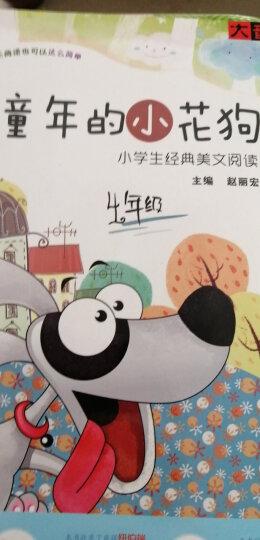 童年的小花狗:小学生经典美文阅读4年级(1CD+1书) 晒单图