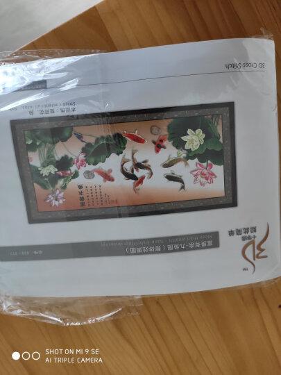IKER 十字绣九鱼图客厅家用新款印花3D十字绣刺绣线绣自己绣花草系列 小版棉线--150x60厘米  送实用工具包 晒单图