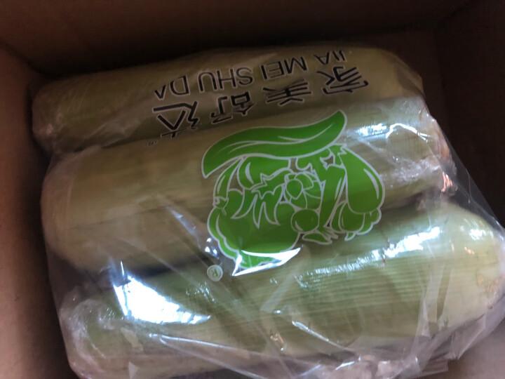 家美舒达 山东特产 小芋头 约750g 毛芋头 芋艿  烧烤食材 产地直供 新鲜蔬菜 晒单图