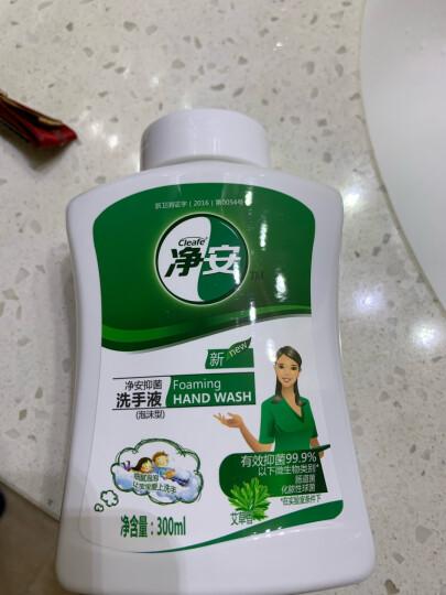 净安(Cleafe)泡沫洗手液300ml 儿童洗手液 抑菌洗手液 预防流感 晒单图